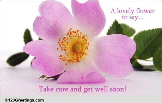 Take Care And Get Well Soon Free Get Well Soon Ecards Greeting