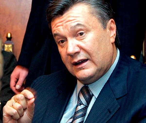 Фото:  «Помойки» Януковича