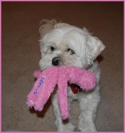New-Pink-Wubba