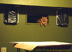 Fluffy the Cat lounges in the projection booth porthole. Photo copyright 2004 Richard Greenhalgh.