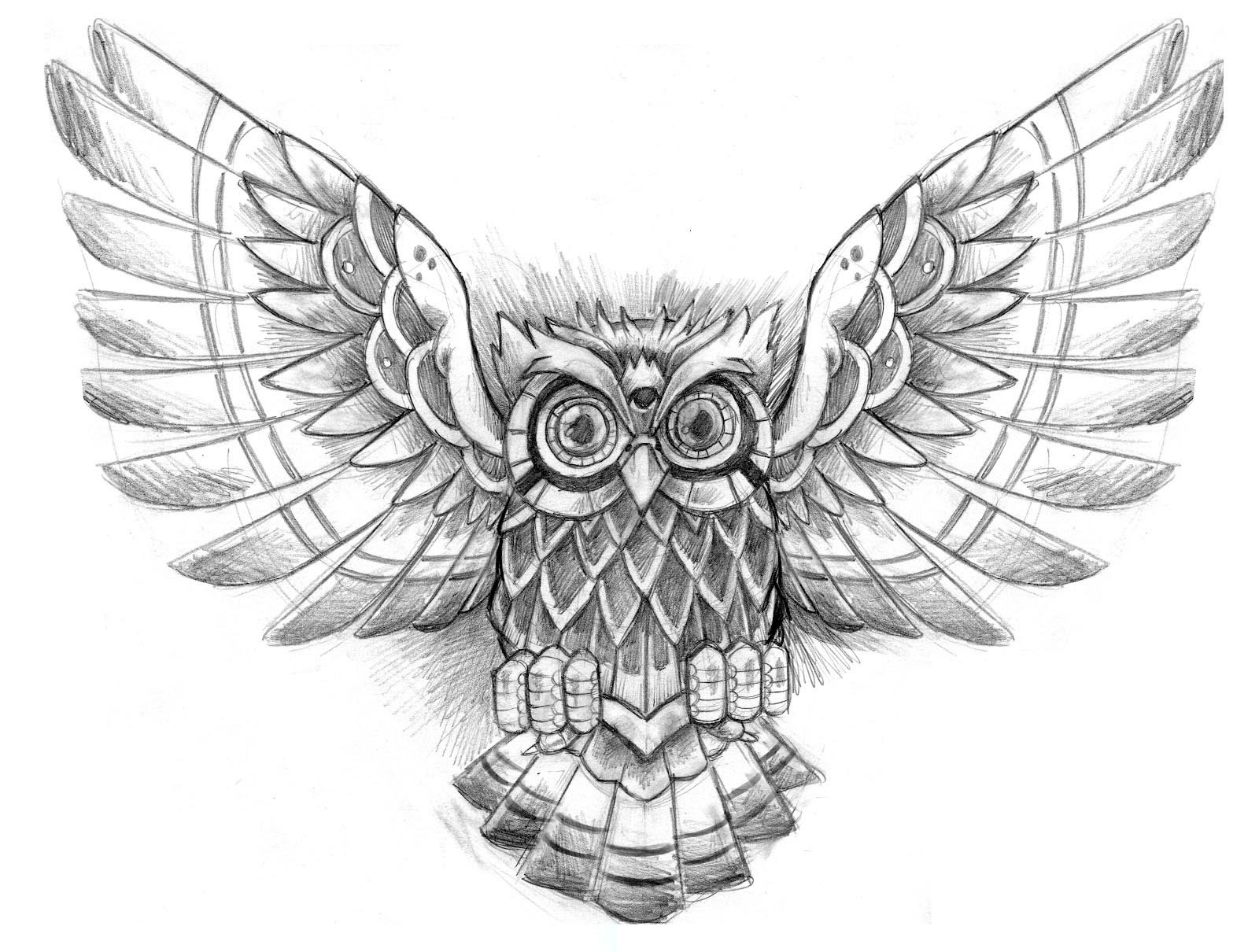 Owl Tattoo Drawing At Getdrawingscom Free For Personal Use Owl