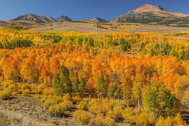 -- Eastern                                                       Sierra Nevada                                                       mountain range,                                                       California --