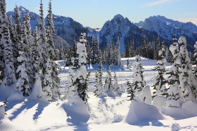 IMG_0232 Ranger-Led Snowshoe Walk