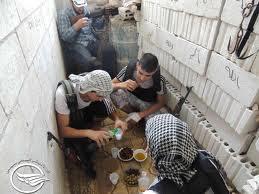 mujahidin srh