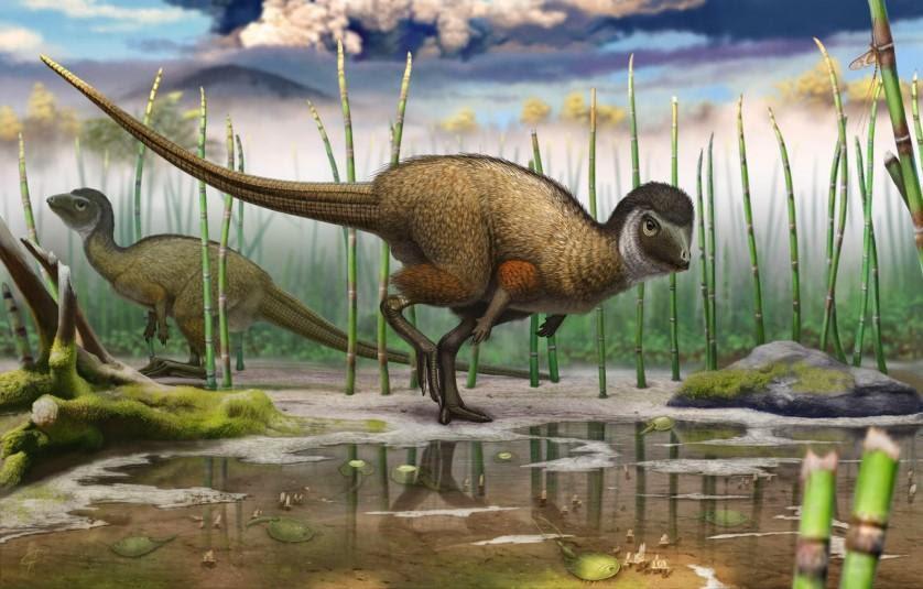 descobertas pré-históricas incríveis 6