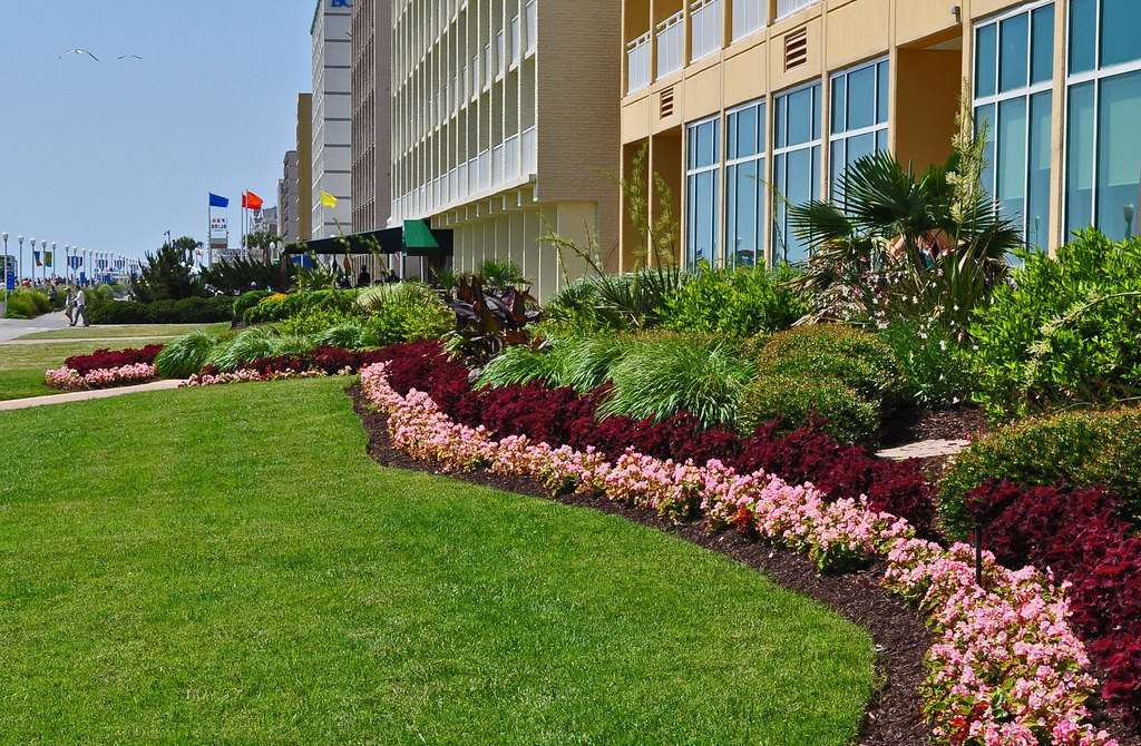 Hotel Landscaping (3)