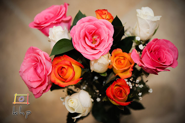 Winter Rainbow is such a lovely name for a bouquet of roses.