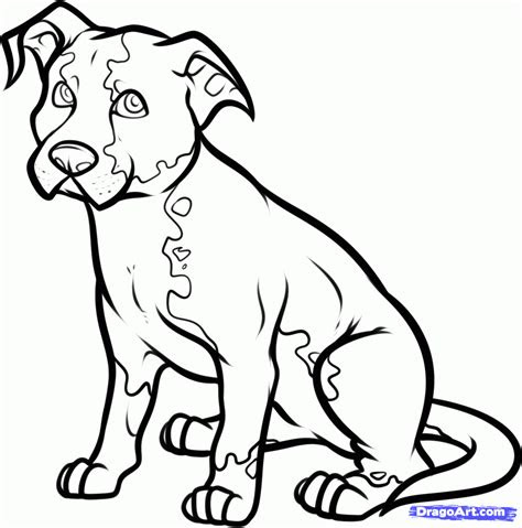 sketch drawings  dogs lol picture collection