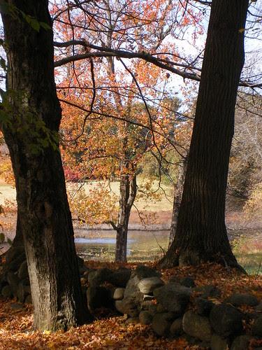 Quintessential New England Fall