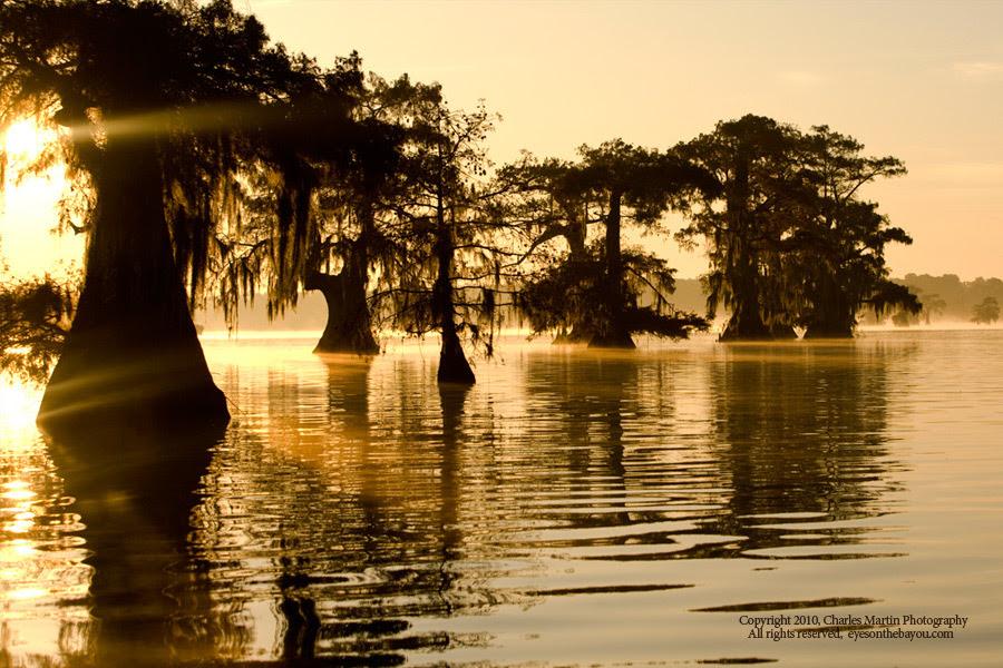 Louisiana Scenery Wallpaper - WallpaperSafari