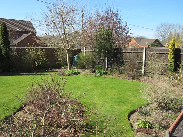 Spring garden (1)