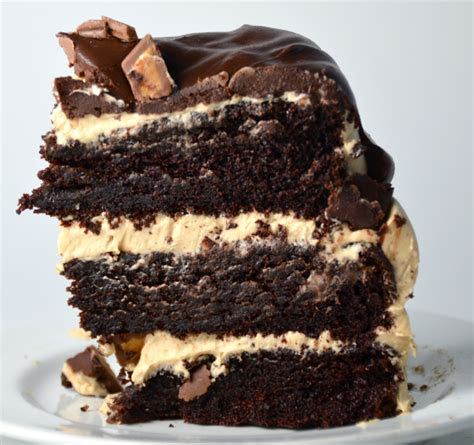 delicious chocolate cake recipes