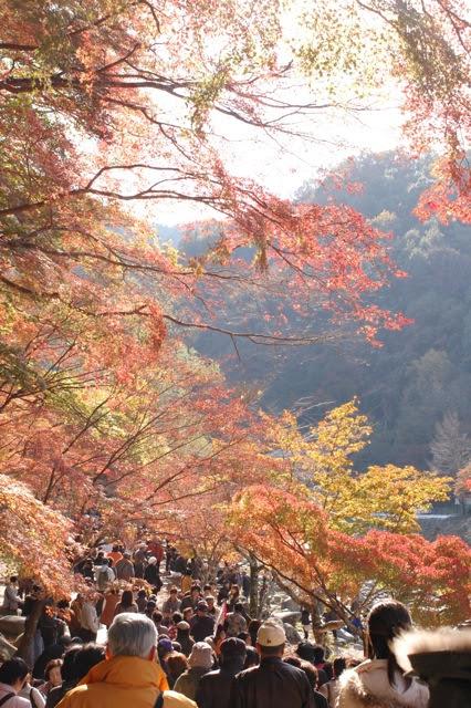 Drive to Gifu, Korankei