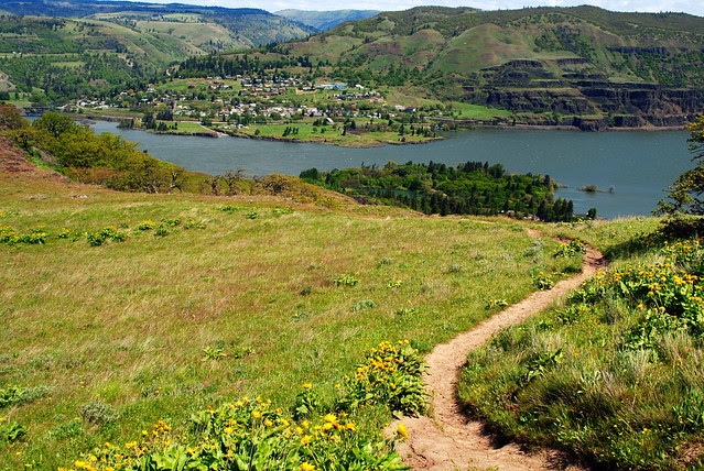 Lyle, Washington in the distance - Tom McCall Preserve - Eastern Columbia River Gorge
