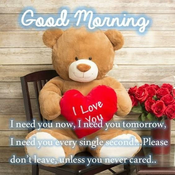 Romantic Good Morning Teddy Bear Pictures Photos And Images For