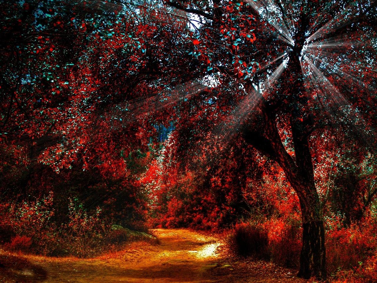 http://24.media.tumblr.com/tumblr_mdqsyu22aN1r1wmcto1_1280.jpg