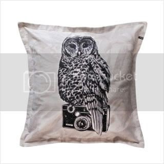 An Owl and a Camera on a Pillow