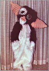 Gizmo the Gremlin costume