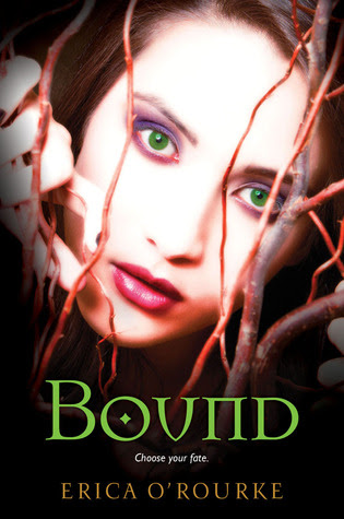 Bound (Torn Trilogy, #3)