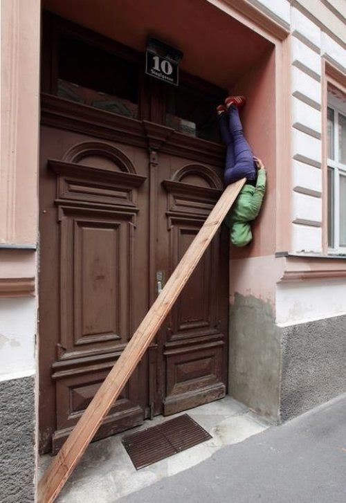 > New form of planking? - Photo posted in Wild videos, news, and other media | Sign in and leave a comment below!