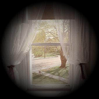 Pela fresta da janela...