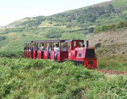 Walrus and train