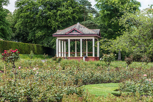 Belfast Botanic Gardens by infomatique