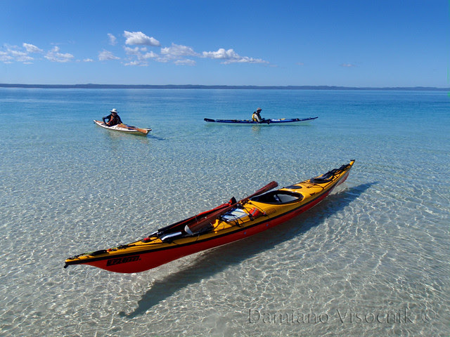 Impex Assateague at Fraser Island (c)