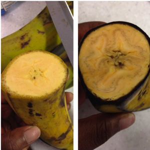 how to preserve plantains