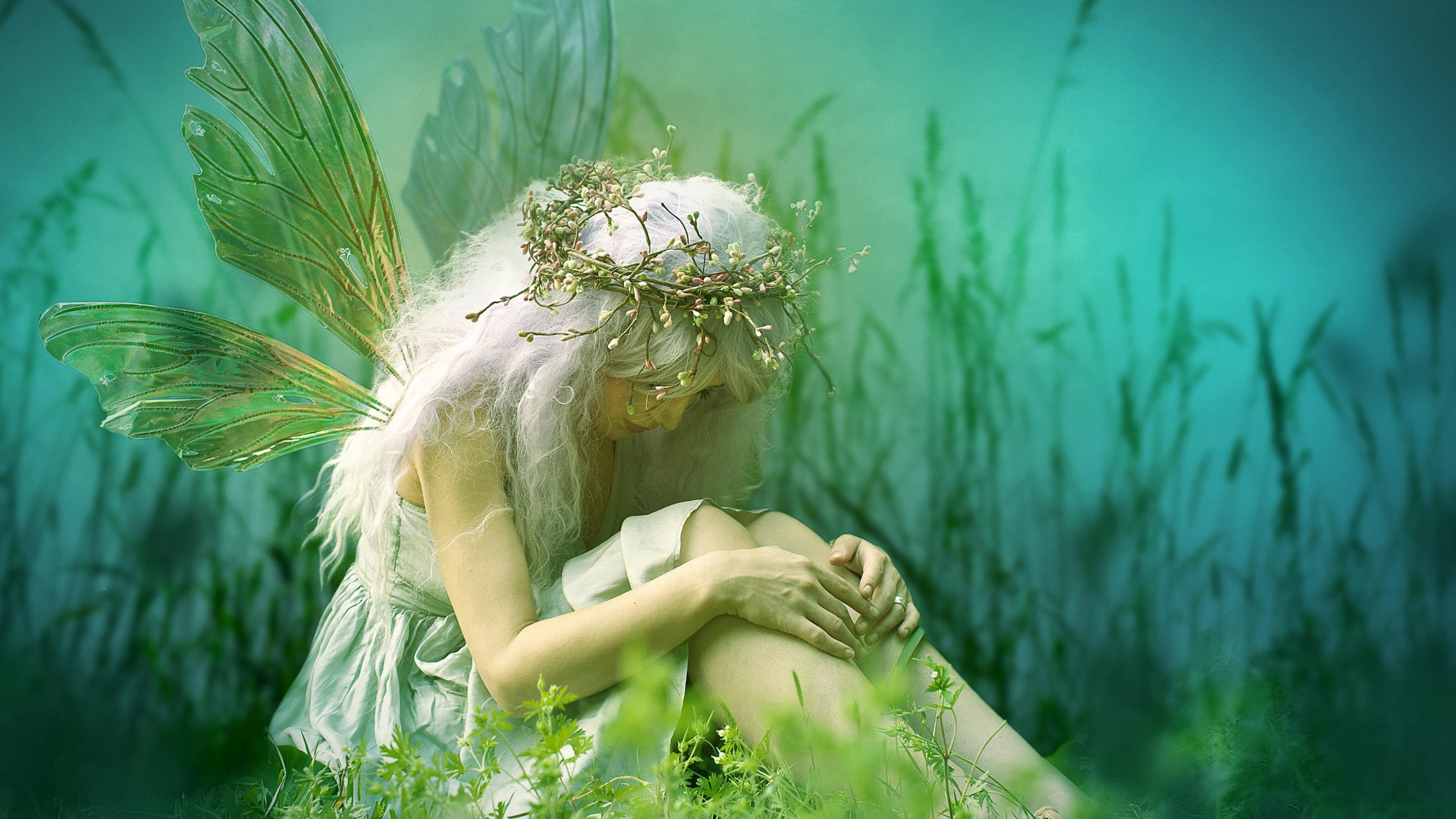 Fairy Backgrounds (57+ images)