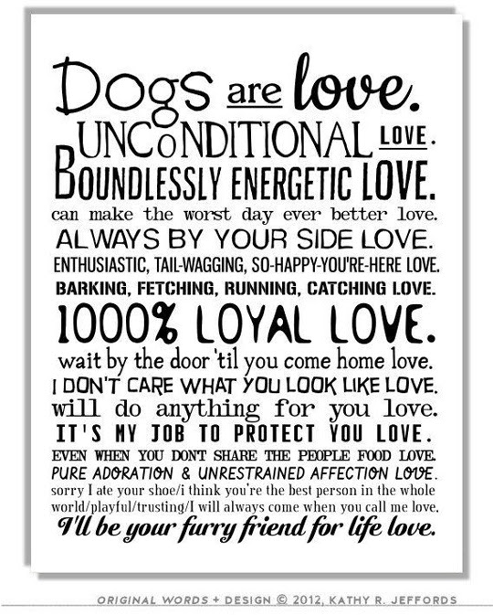26 Dog Quotes About Love And Compassion Spartadog Blog