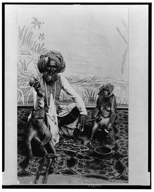 Índia - Fakir com macacos