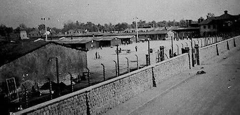 концлагерь маутхаузен список военнопленных