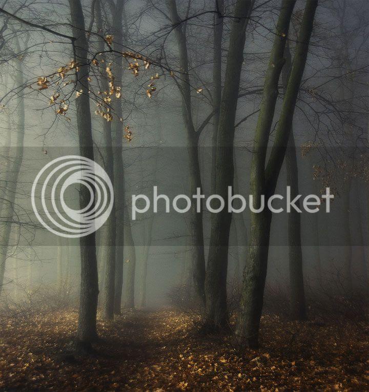photo Dmitry-Bogachuk-4_zps931fdc7a.jpg