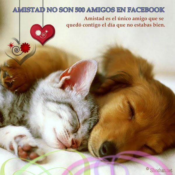 Imagen Para Tu Muro De Facebook Amistad No Son 500 Amigos En Facebook