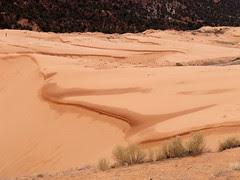 Coral Pink Sand Dune (Snapshot)