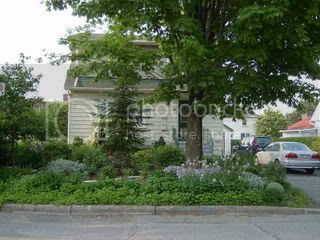 Front Garden 2006