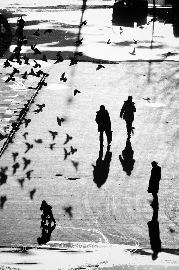 Photograph Playing with shadows by Martin Hricko on 500px