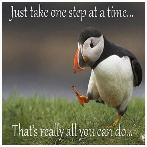 One Step At A Time Funny Pictures Quotes Memes Funny Images