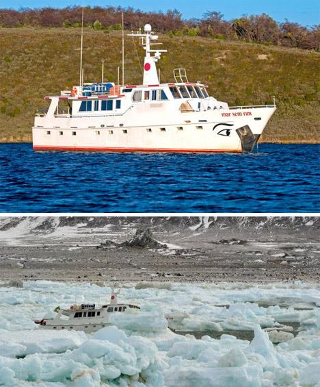Abandoned Antarctica Sunken Ship 2