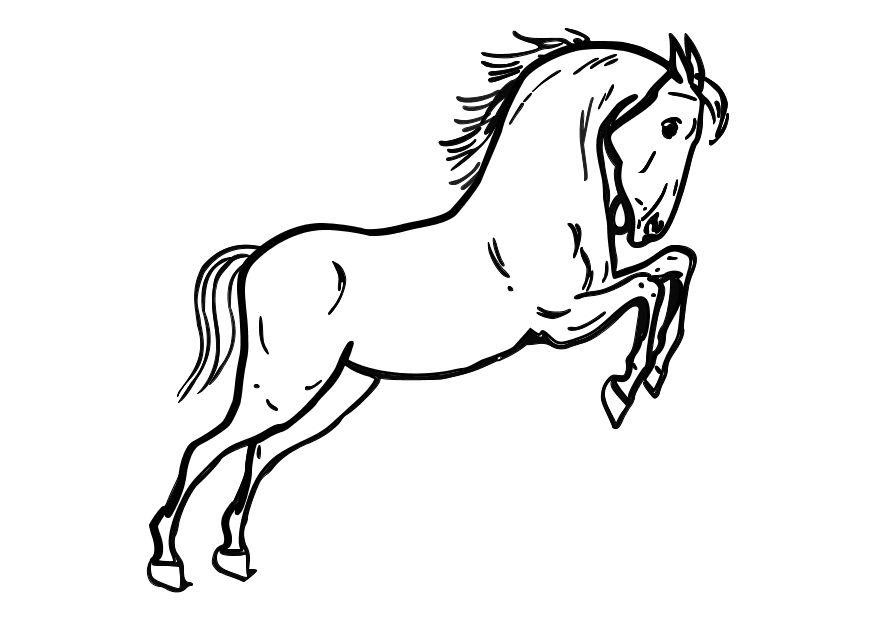 Dibujo Para Colorear Caballo Saltando Img 10362 Az Dibujos Para