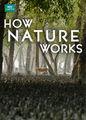 How Nature Works | filmes-netflix.blogspot.com