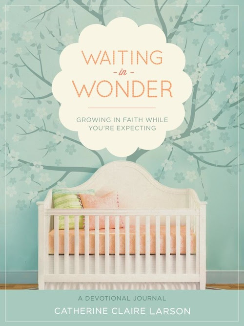 Waiting In Wonder Growing In Faith While Youre Expecting