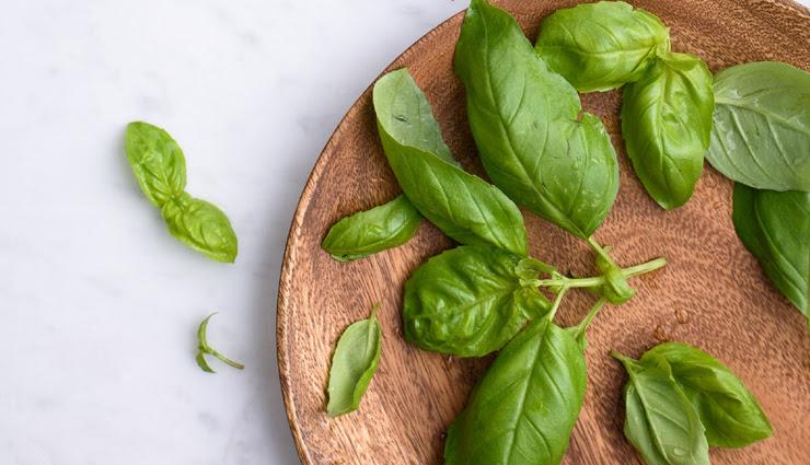 basil,health benefits of basil,basil health benefits,health benefits,Health,Health tips
