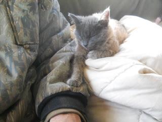 Mimi with Paw on David's Arm