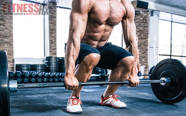 Do Full Body Workouts Build More Muscle And Strength?