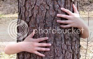Tree HUG!!