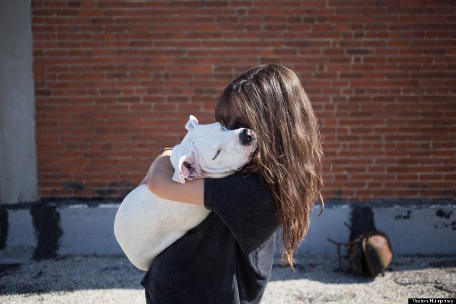 o DOG HUG 900 e51c4