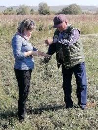 Ученые помогают сельхозпредприятиям Тувы в борьбе за урожайность зерновых и продуктивность скота
