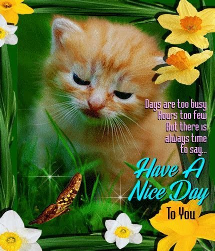 A Nice Day To You  Free Have a Great Day eCards
